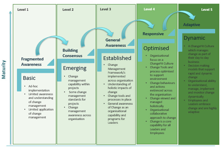 Diagram explaining change capability assessment