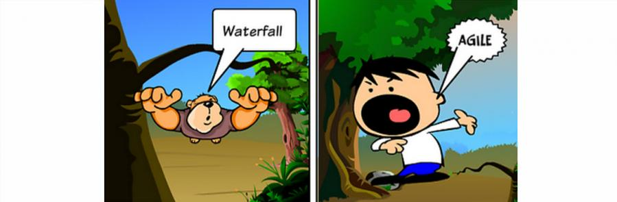 Agile waterfall cartoon